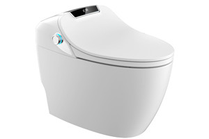 更舒适更贴心 恒洁卫浴Q9智能坐便器测评