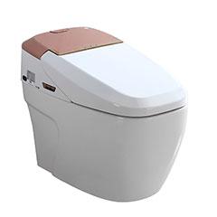 金牌卫浴RF3111Z智能马桶